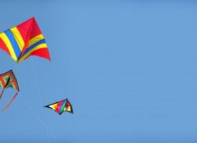 Championnat de France de cerf-volant acrobatique